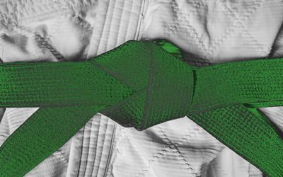 Lean Green Belt training